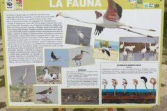 salina-calcara-trapani-festa-delle-oasi-20_05_2018-02-scaled
