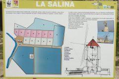 salina-calcara-trapani-festa-delle-oasi-20_05_2018-04-scaled