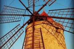 salina-calcara-trapani-paceco-foto-turisti-IMG_2978